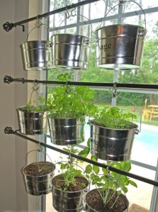 Hanging-Kitchen-Herb-Garden