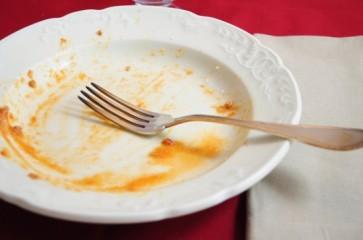 dinner-plate-550x364